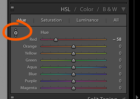 Make Blooming Flowers More Vibrant With Lightroom's HSL Tools