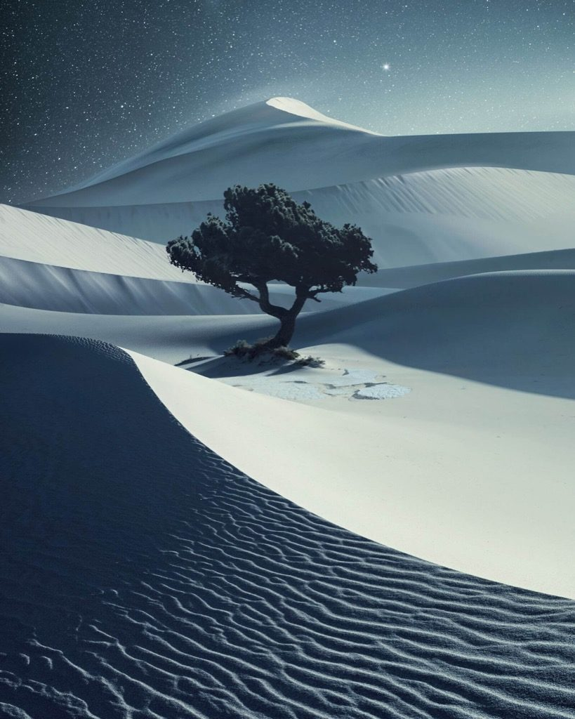 Hasselblad Masters Awards